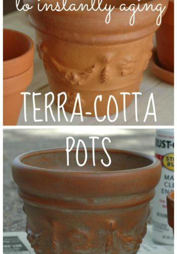 The Secret to Instantly Aging a Terra-Cotta Pot
