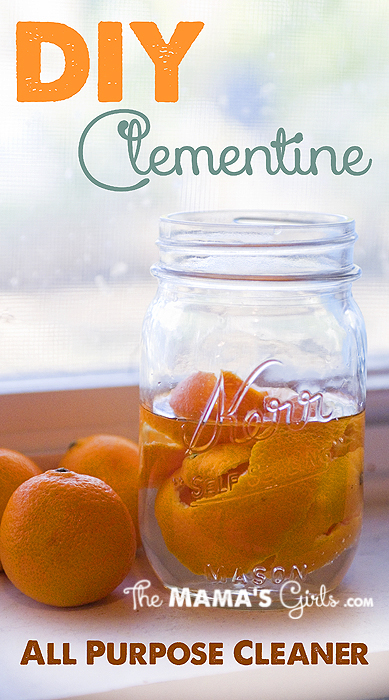 DIY Clementine All Purpose Cleaner