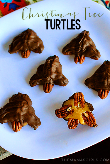 Christmas Tree Turtles