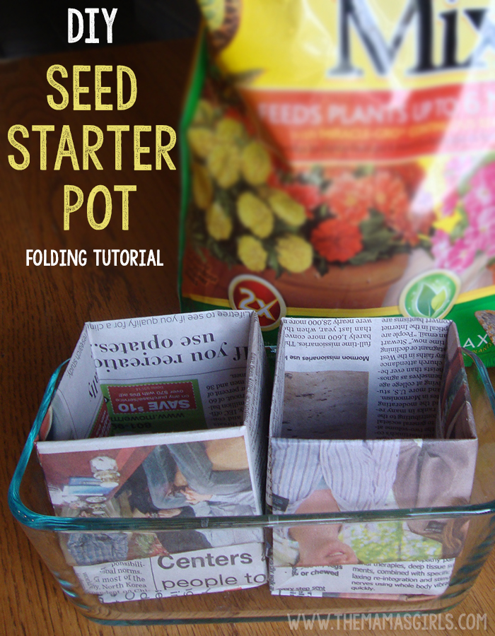 Starting Seeds Indoors with DIY Newspaper Cups